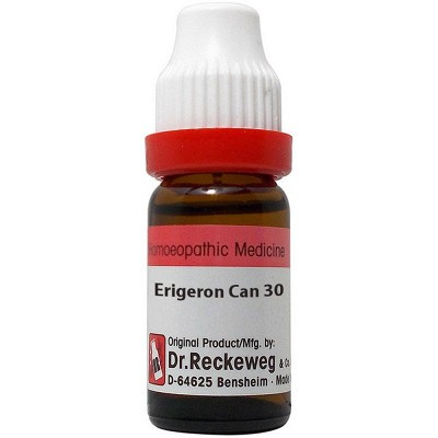 Erigeron Canadensis