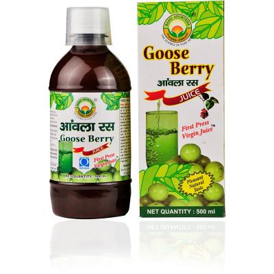 Basic Ayurveda Amla Juice (Goose Berry) (500ml)