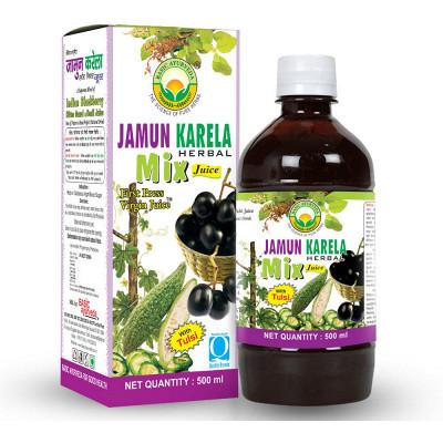 Basic Ayurveda Jamun Karela Mix Juice (500ml)