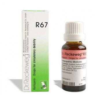 R67 (Kollapsin) (22ml)